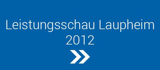 Leistungsschau-Laupheim-2012